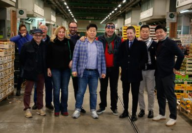CCIAA Catanzaro, un ponte per l'export verso la Corea del Sud